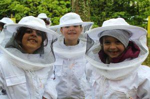 Bienenwelten (1)-2