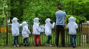 Bienenwelten (3)-2